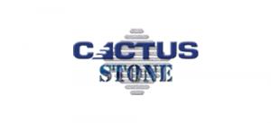 cactusstone